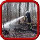 Feuer - Im Wald oder Fläche